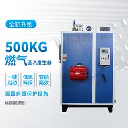 500kg蒸汽发生器