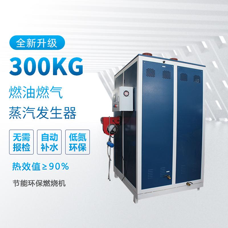 300kg蒸汽发生器